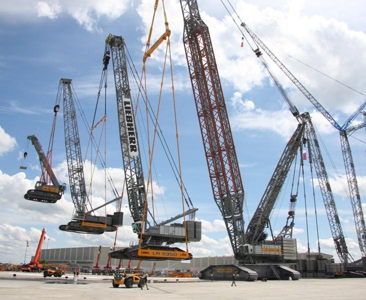 4 cranes.jpg