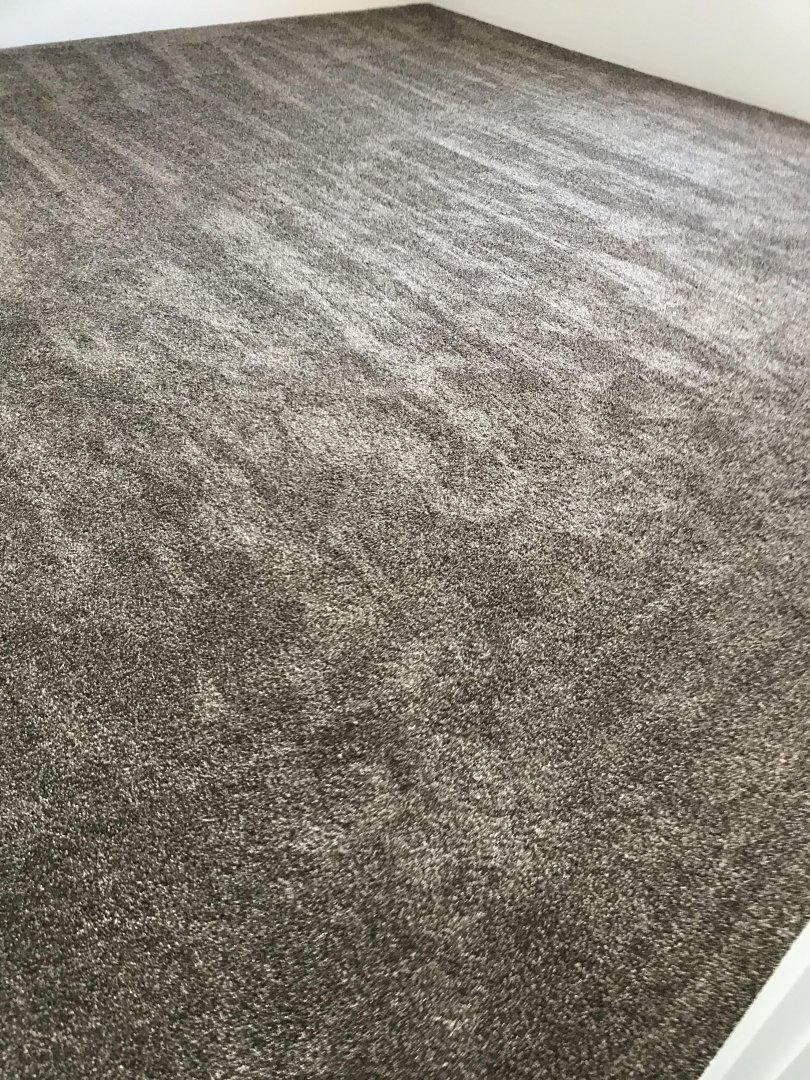 Bedroom Carpet.jpg