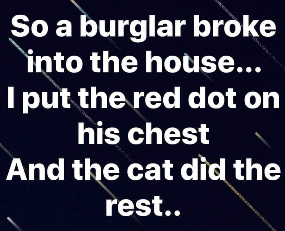 burgler.jpg