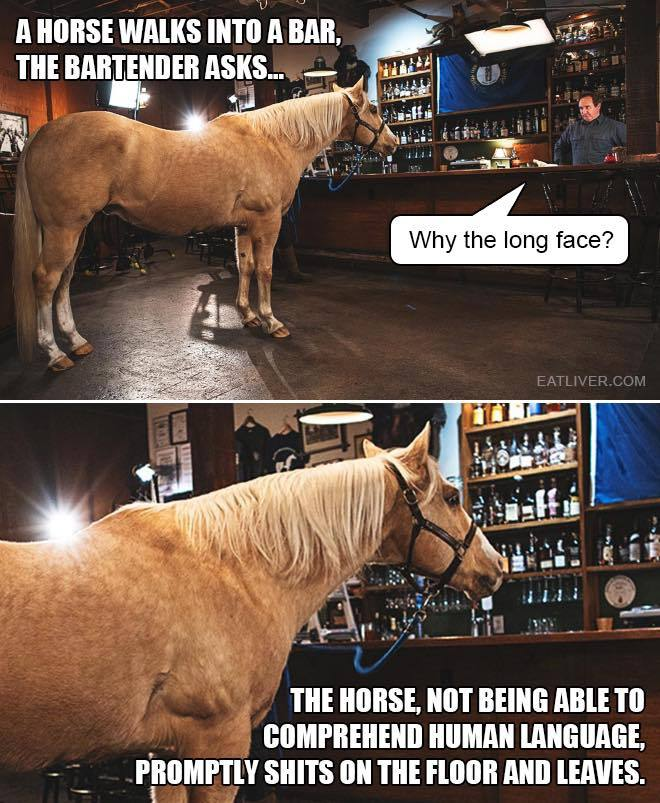 horse_b976aa7259e7bde1c93649919e22b78a89f1b7e7.jpg