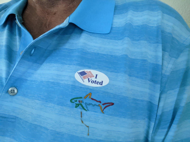 I Voted 2020.jpg