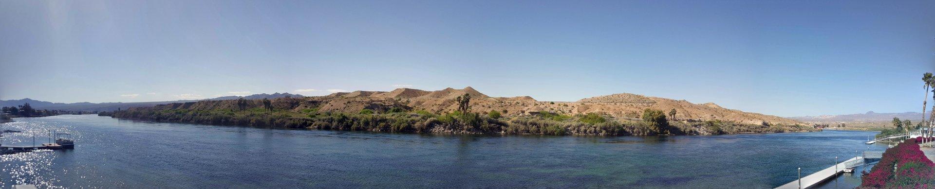 River Bullhead.jpg
