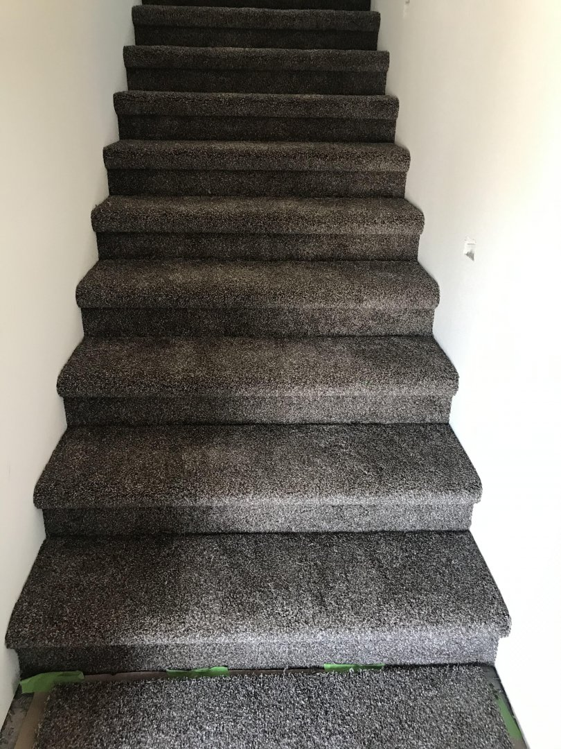 Stair Carpet.jpg