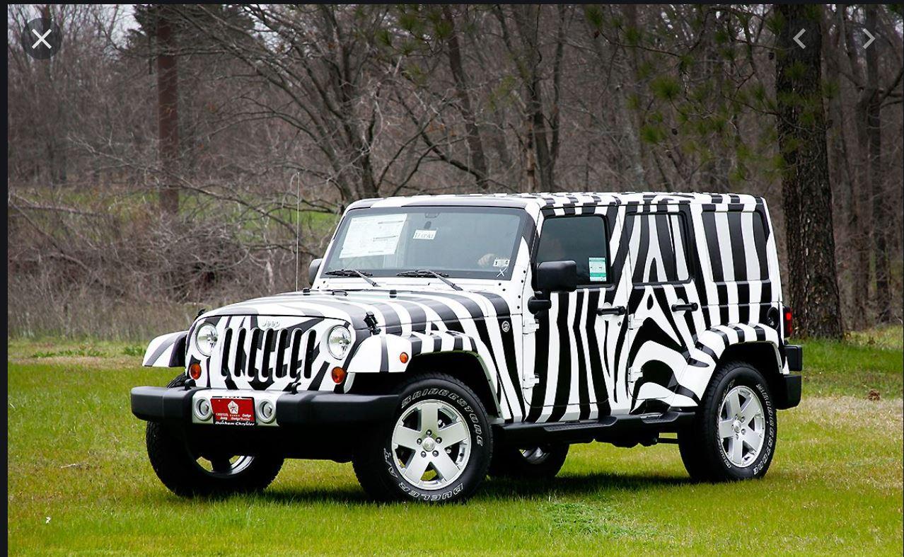 Zebra Wrap.JPG